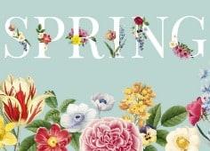 Frühlings Vektoren